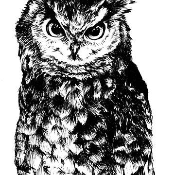 Non-Galaxy Owl by Insane-Furrets