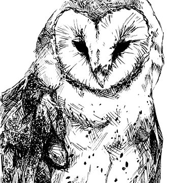 Barn Owl by Insane-Furrets