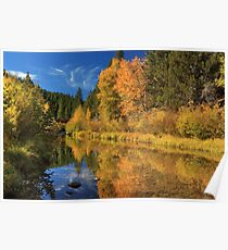 Autumn Along The Susan River Poster
