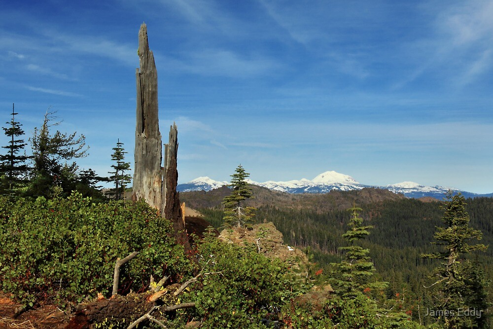 Mount Lassen From A Distance by James Eddy