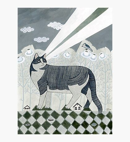 Beaming Cat Photographic Print