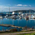 Beauty Point Marina by fotosic
