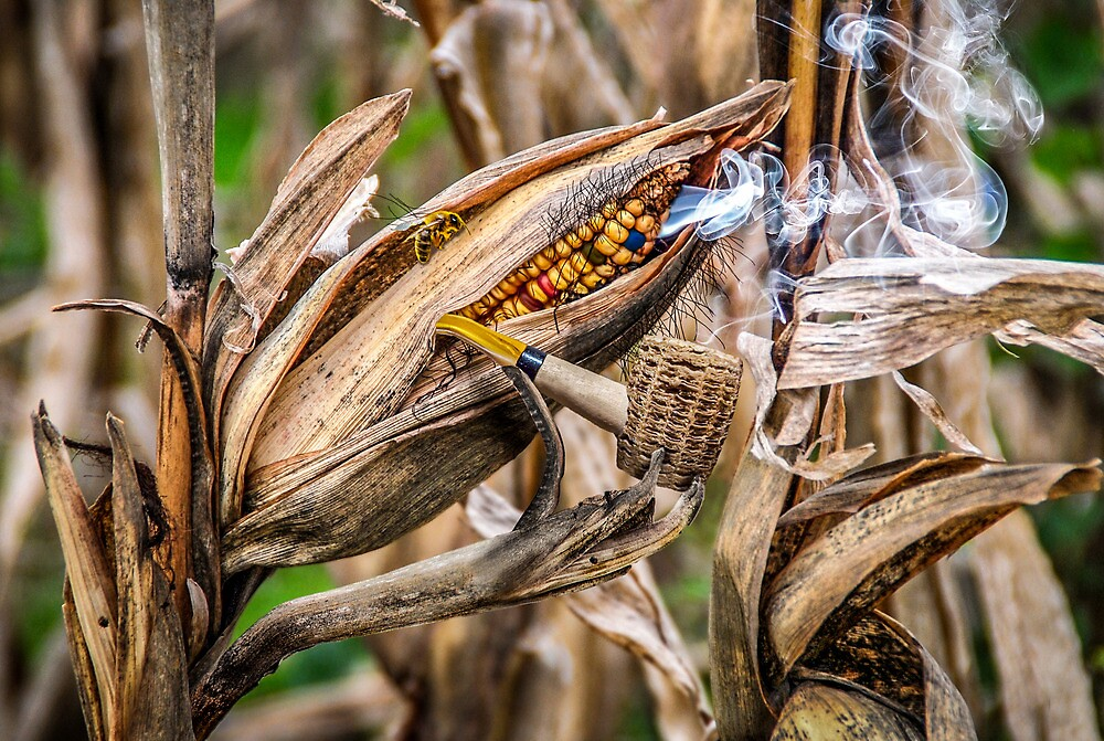 Smoked Corn by Randy Turnbow