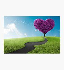 Heart tree Photographic Print