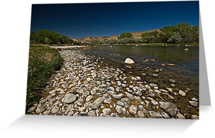 San Juan River, New Mexico by Marvin Collins