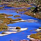 San Juan River, Different POV by Marvin Collins