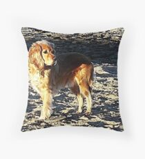 Speculation Throw Pillow