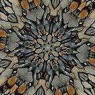 River Rock Fractal by Tori Snow