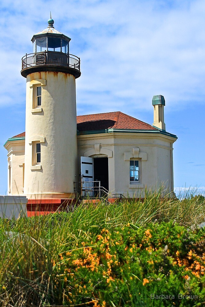 Coquille River Lighthouse by Barbara  Brown