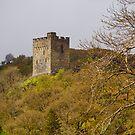 Dolwyddelan Castle Snowdonia by mlphoto