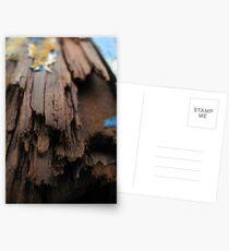 Slow Decline Postcards