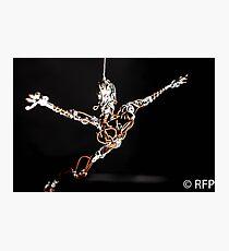 Sculptures Photographic Print