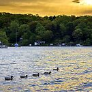Sunrise on Sodus Bay by Mikell Herrick