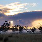 Skies on Fire by David Haworth