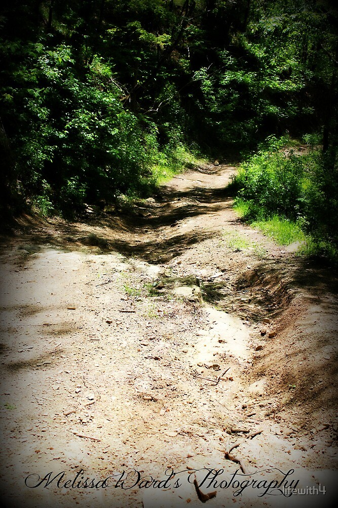 Atv trail by lifewith4