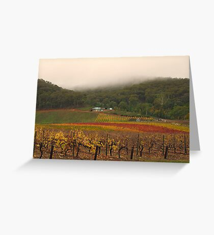 Misty Bright Autumn Vineyard Greeting Card