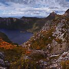 Textures of Cradle - Plateau Creek Cradle Mountain N.P. by Mark Shean