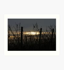 Sonnenuntergang Art Print