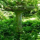 How Green Was My garden by WildestArt
