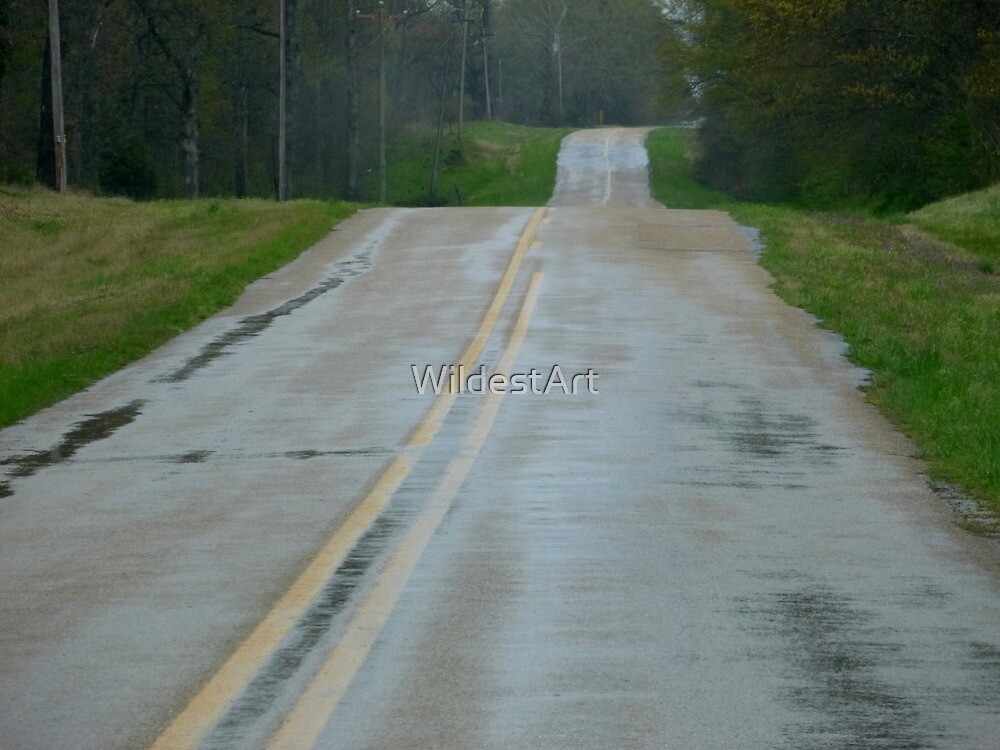 Ribbon Of Road by WildestArt