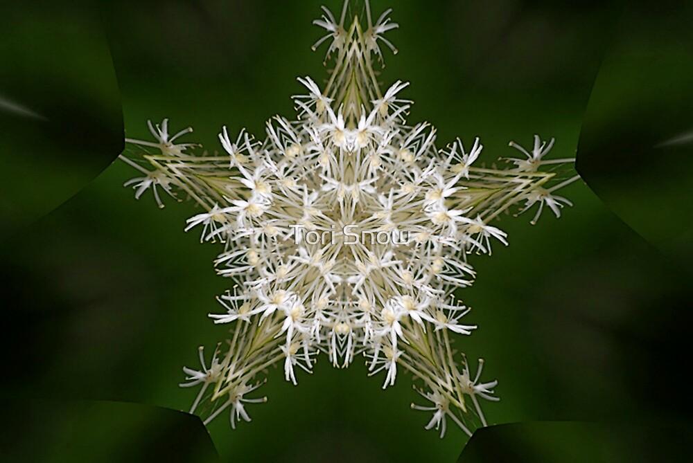 Bear Grass Star by Tori Snow