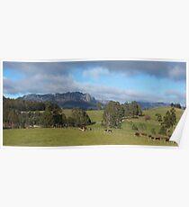 Mt Roland - viewed from near Staverton Poster