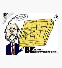 Ben Bernanke's Belgian Waffle Pie Chart Photographic Print