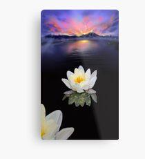 Lotus at Dawn Metal Print