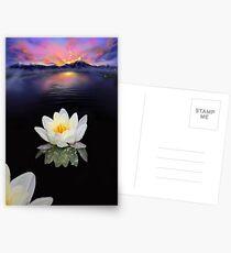Lotus at Dawn Postcards