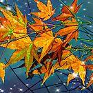 Autumn Sparkle  by Tori Snow