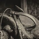 The Saddle by anorth7