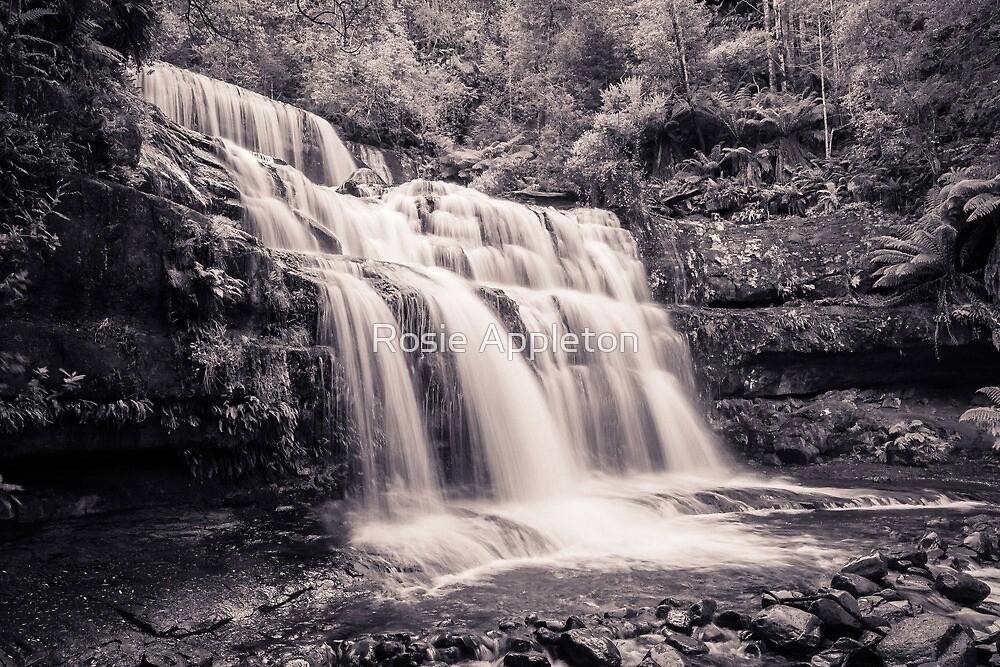 Liffey Falls III by Rosie Appleton