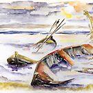 The Forgotten Boats by Barbara Pommerenke