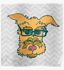 Mack The Cool Nerd Dog Poster