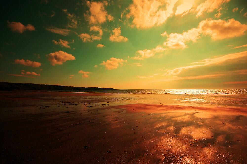 ALL ALONE ON MY BEAUTIFUL BEACH by leonie7