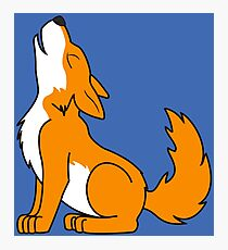 Orange Howling Wolf Pup Photographic Print