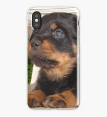 Cute Faced Rottweiler Puppy Side View iPhone Case/Skin