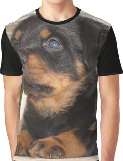 Cute Faced Rottweiler Puppy Side View Graphic T-Shirt