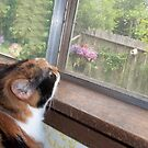 The Little Girl With The PartiDress On bird watching... by redqueenself