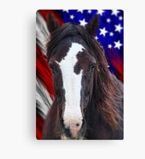 Mustang Freedom Canvas Print