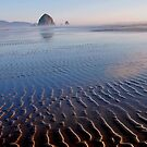 Ripples in the sand by Tina Beck