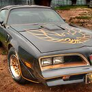 Trans Am 1 by Thomas Young