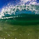 Clam by Matt Ryan