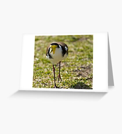 And now you run ! Greeting Card