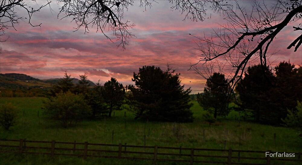 Red Sky - Scotland by Forfarlass