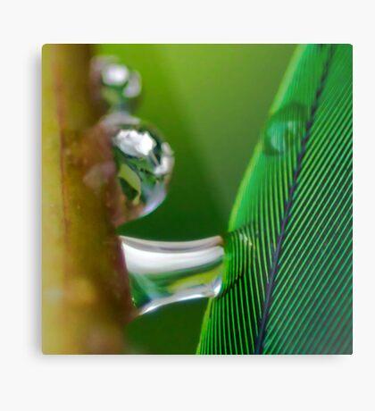 Dreams of Green Metal Print