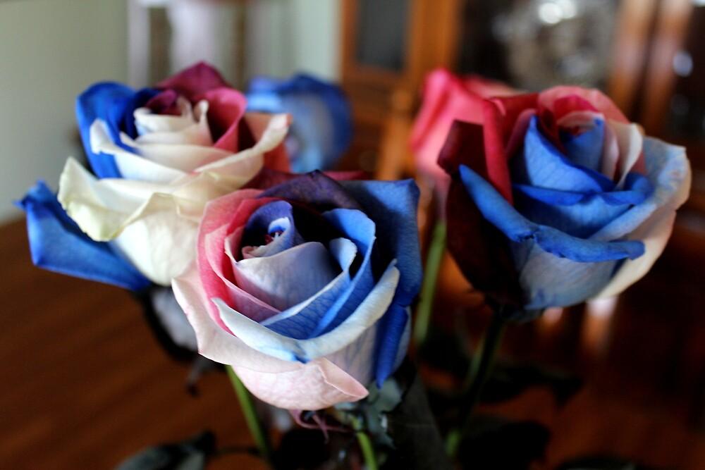 Memorial Carnations by LaurelMuldowney