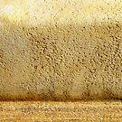 Desert Dust Storm by Kathie Nichols