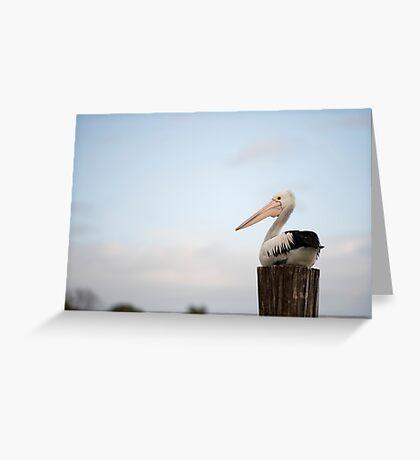 Pelican Perch Greeting Card