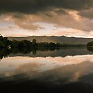 Morning on the Daintree I by Richard Heath